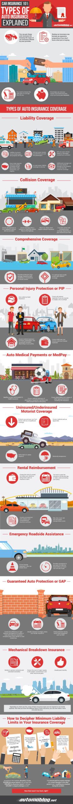 car insurance 101 infographic