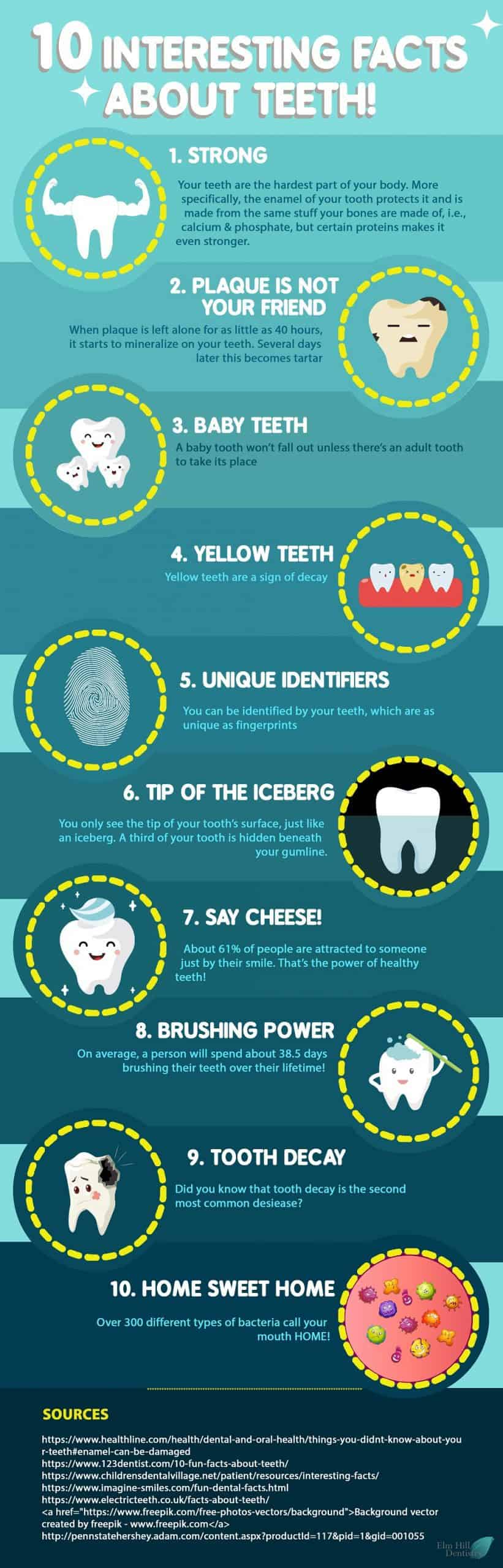 interesting facts about teeth infographic scaled 1