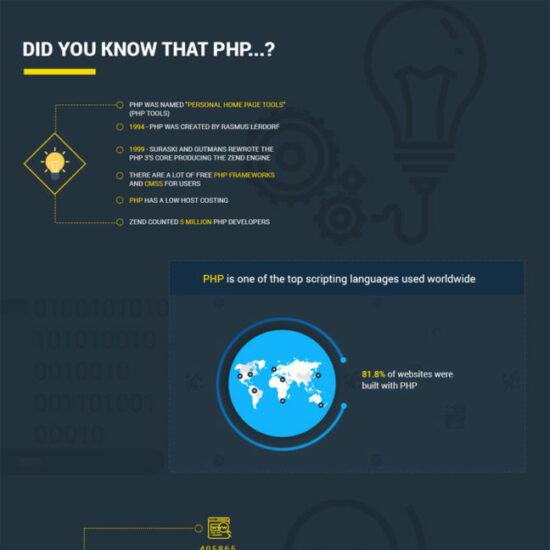 php developers ukraine infographic